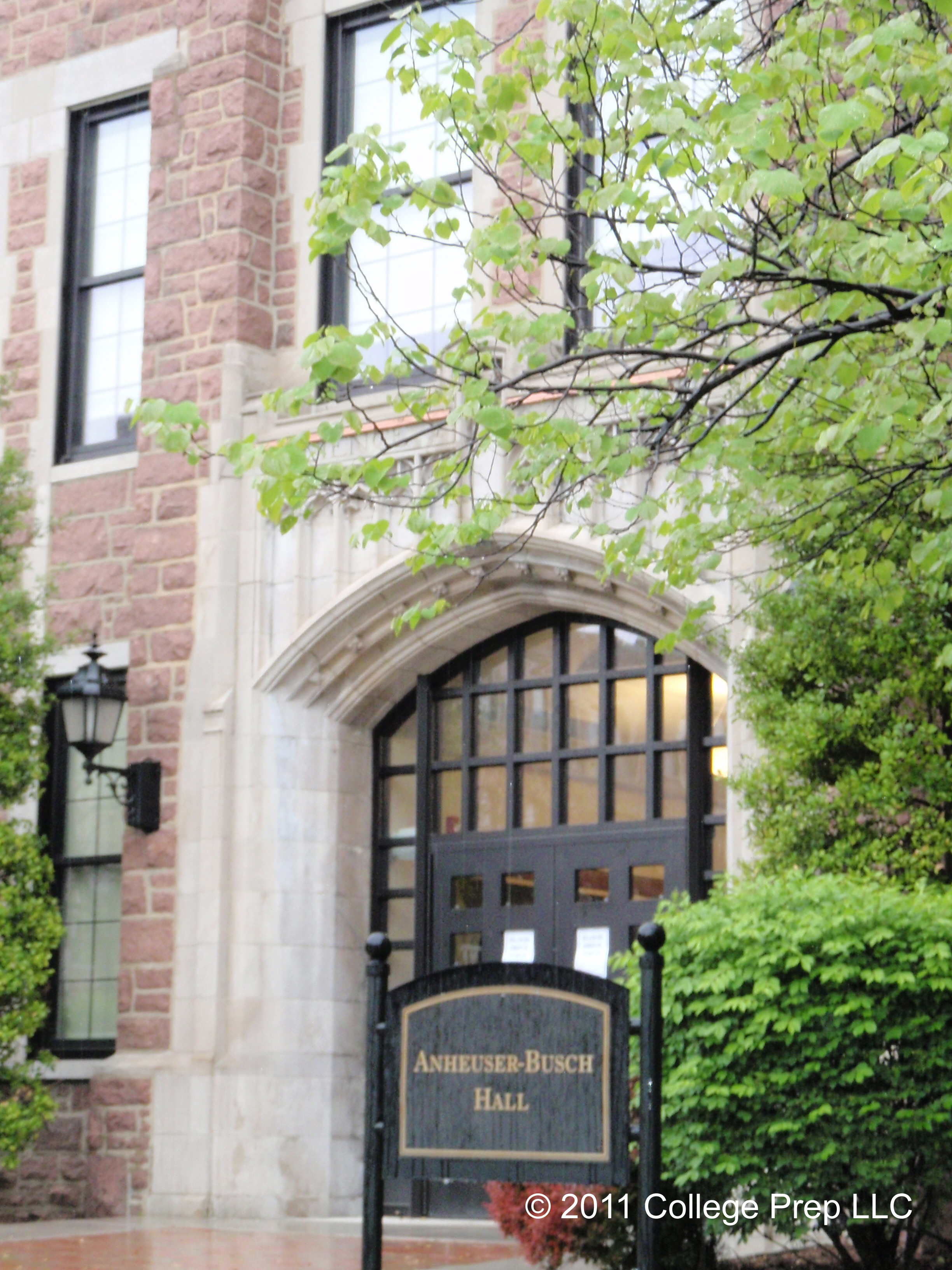 why i want to join fontbonne university What are the top 3 reasons someone should attend cornell the top three reasons someone should attend cornell university is you want a university that has.